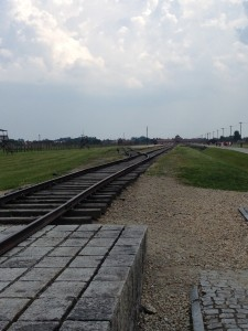 Train tracks leading into Birkenau